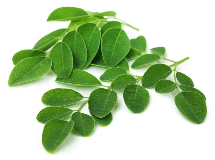 Manufacturing organic 100% pure cold pressed moringa seed oil wholesale price